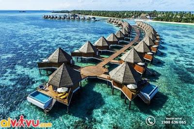 [Hình: maldives.jpg]