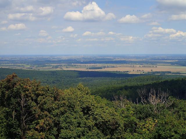 Widoki z Gromnika (393 m n.p.m., Wzgórza Strzelińsko-Niemczańskie)
