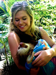 Caring for injured sloth
