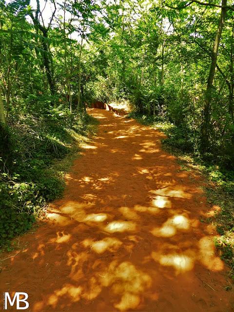 Sentiero dell'ocra roussillon provenza