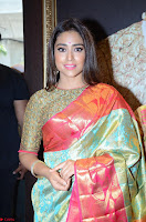 Shriya Saran Looks Stunning in Silk Saree at VRK Silk Showroom Launch Secundrabad ~  Exclusive 095.JPG
