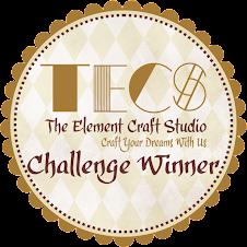 The Element Craft Studio