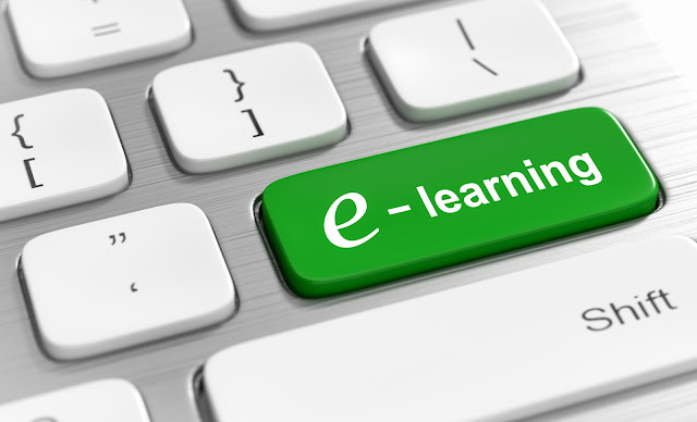 Software Companies - Generate New Revenue Streams and Decrease Costs with Custom e-Learning Content