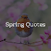 Spring Quotes - Brain Hack Quotes