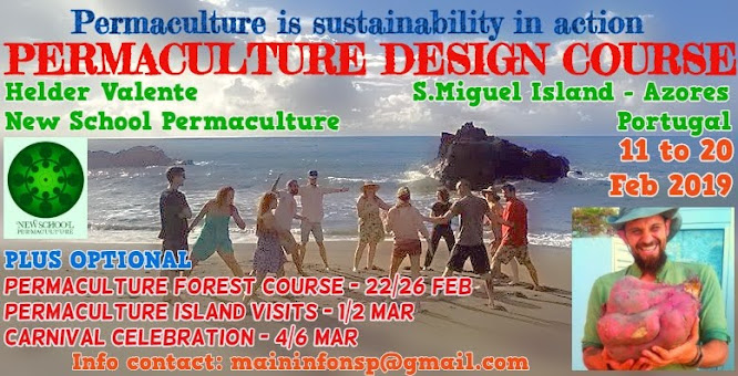 PDC - Permaculture Design Course