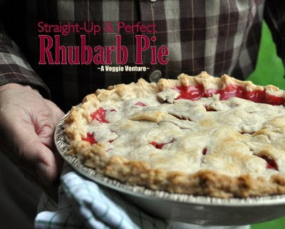 Perfect Rhubarb Pie, all rhubarb, a perfect balance of sweet and tart and cinnamon.
