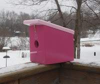new berry pink wood easy cleanout hanging bird house handmade?ref=shop_home_active_1