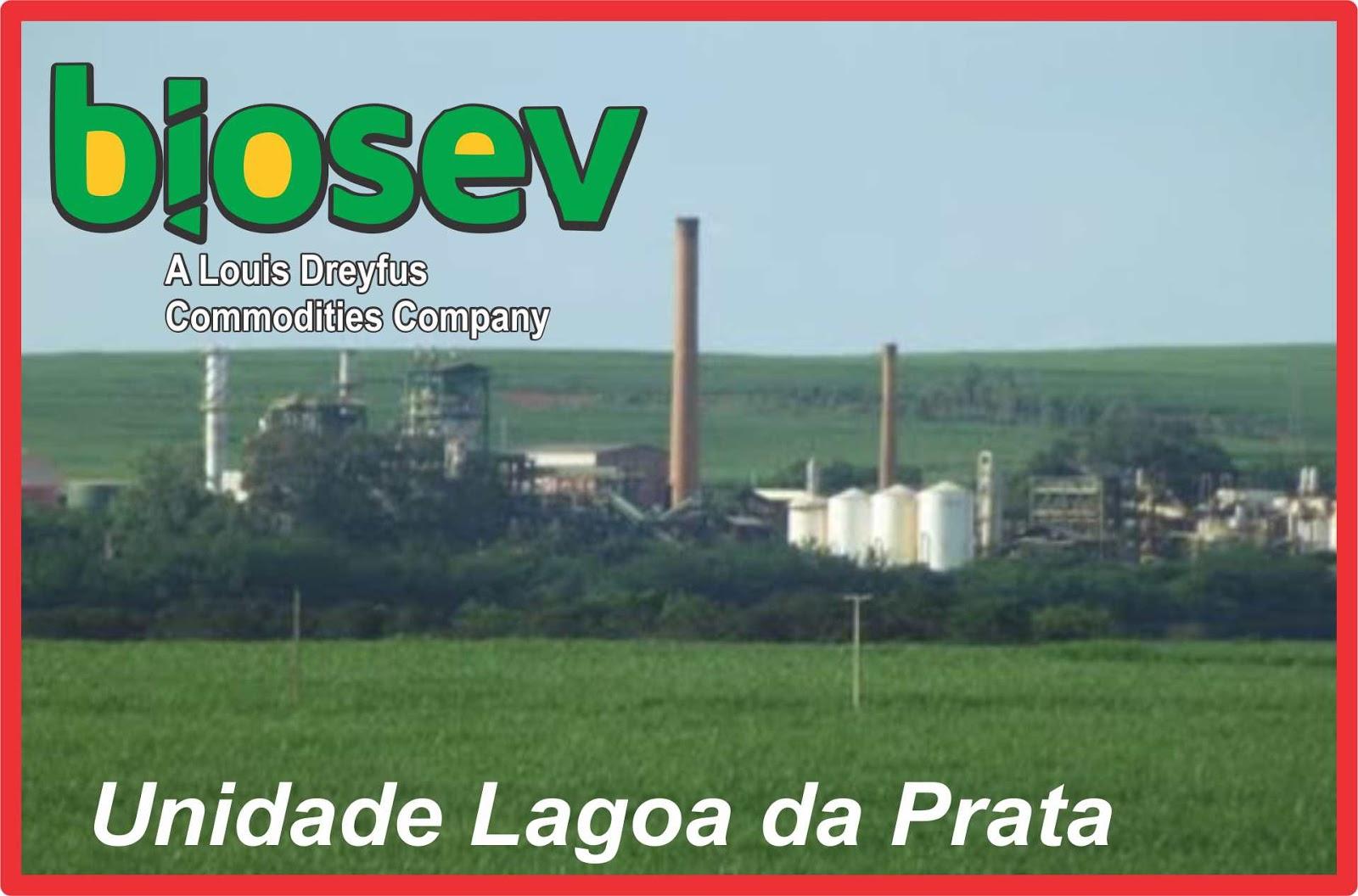 Lagoa da prata biosev a segunda maior processadora de - Louis dreyfus commodities geneva office ...