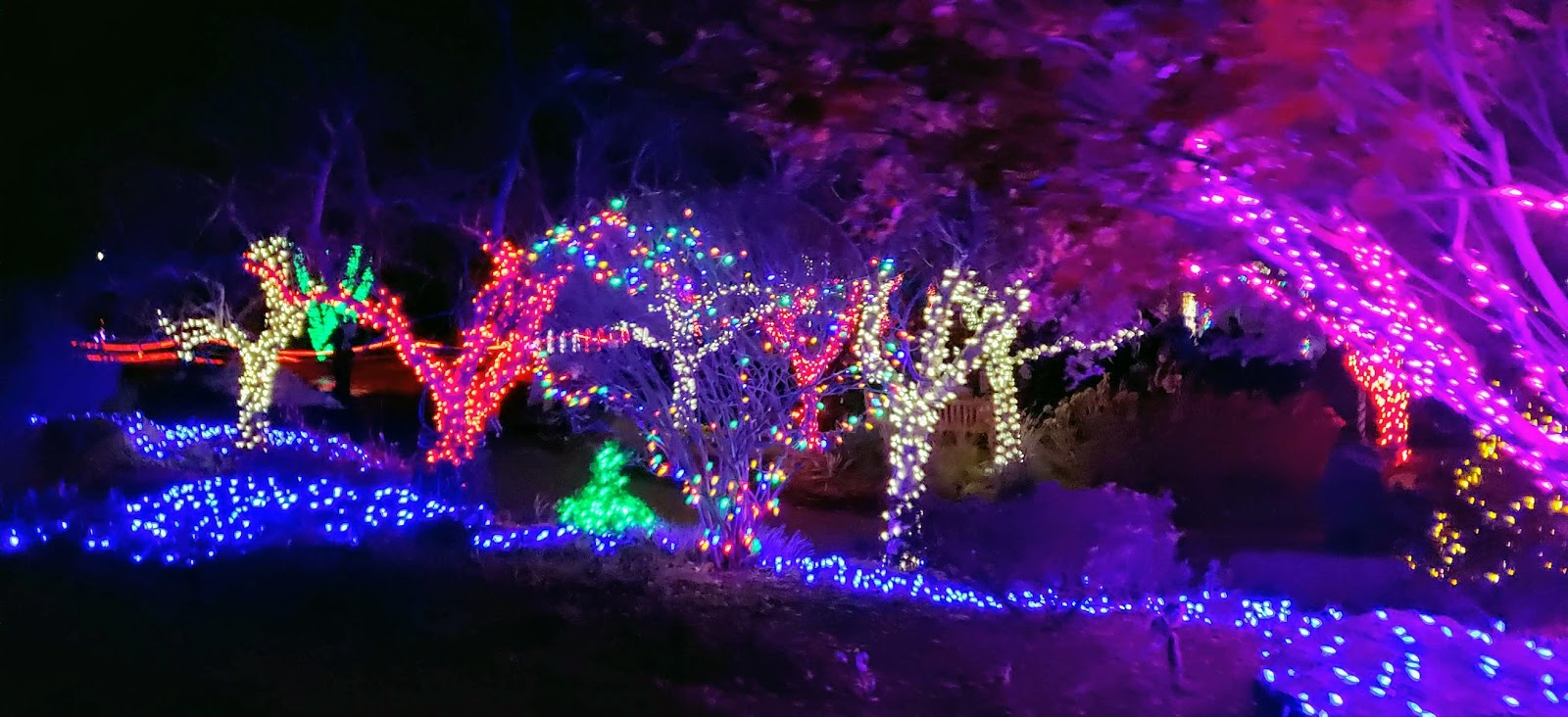20181117 190914 - Meadowlark's Winter Walk Of Lights Meadowlark Botanical Gardens December 28