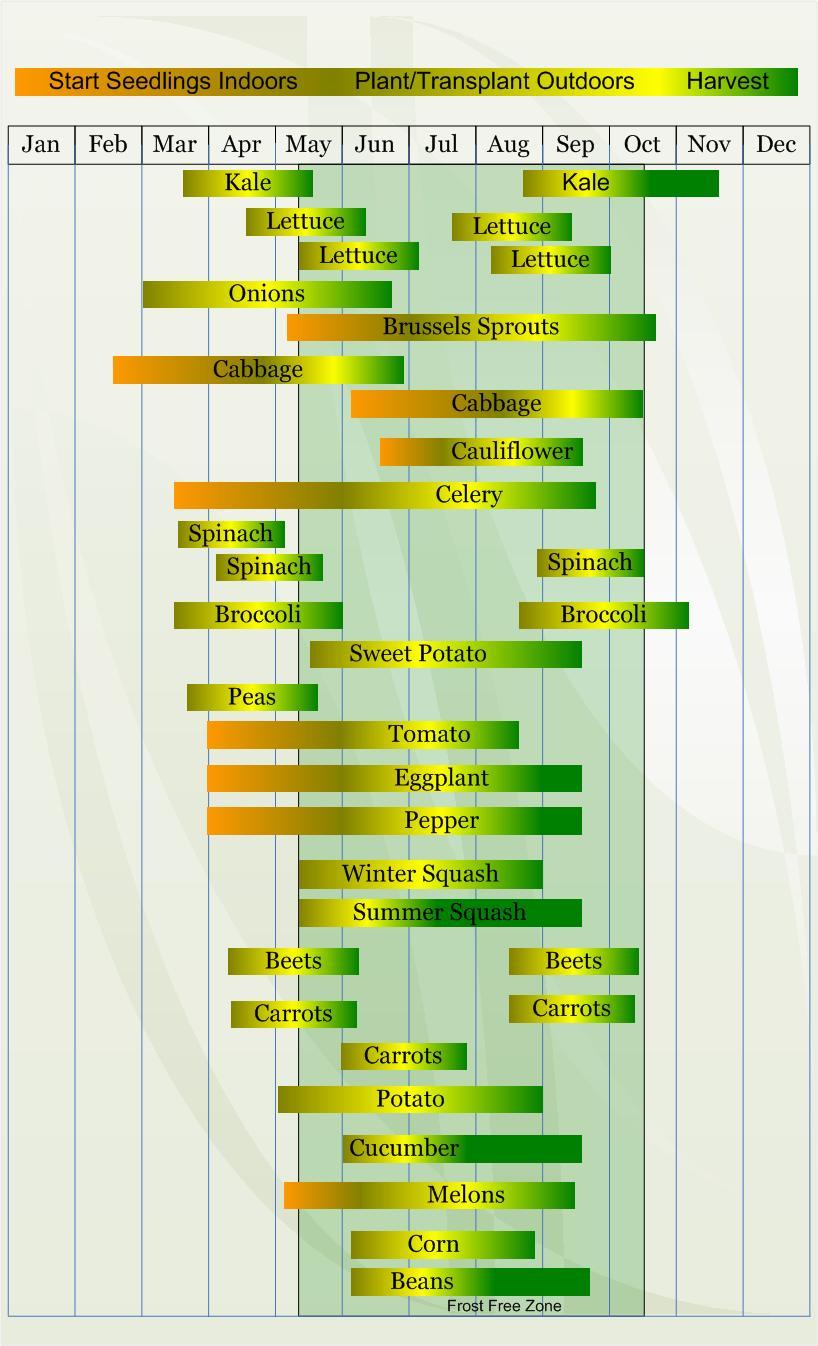Backyard Farming Planting Schedule By Zone
