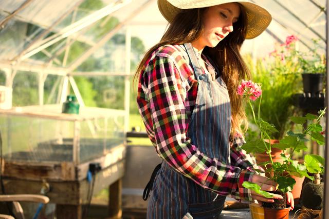 Pengertian Greenhouse (Rumah Kaca) dan Manfaatnya