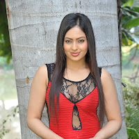 Nikesha patel photoshoot in red dress