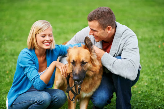 Find Your Advantage: 9 ways to prevent dog bite claims