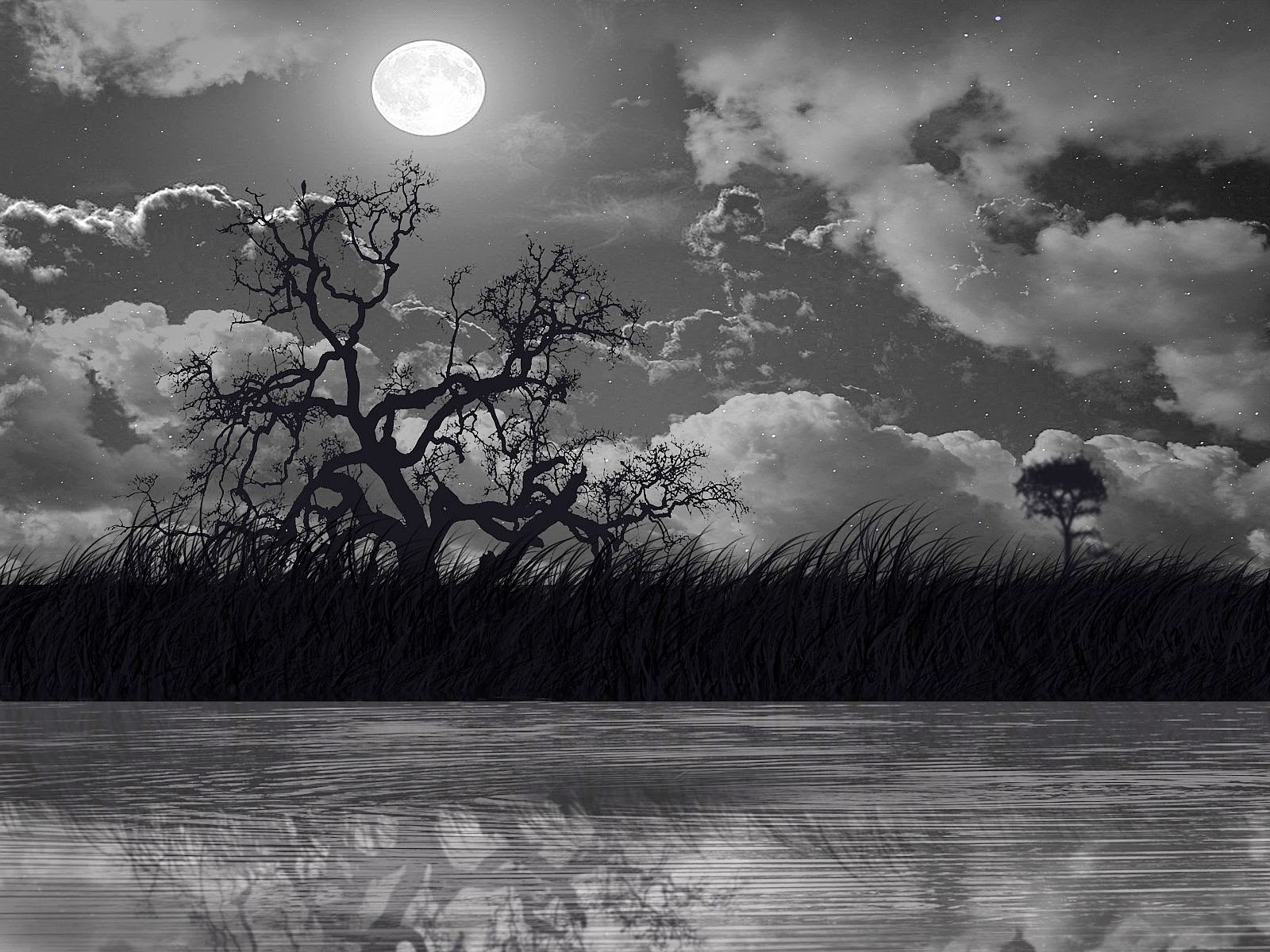 Black-theme-night-with-white-full-moon-wallpaper.jpg