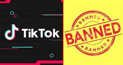 TikTok Removed From Google Play Store