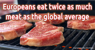 Europeans eat twice as much meat as the global average, Self-service residual carbon offset, Carbon-neutral website, Carbon-neutral lifestyle, GoForZeroCO2, ZeroCO2