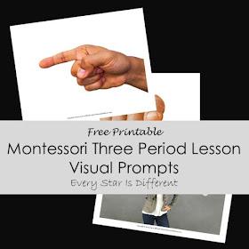 Montessori Three Period Lesson Visual Prompt (Free Printable)