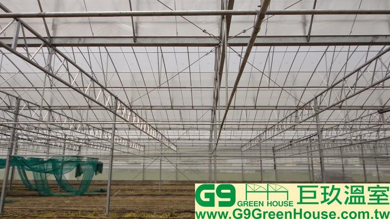 33.圓鋸鋼骨加強型溫室結構每16米固定一組風拉桿與側拉桿連接在H鋼支柱與水平樑完成外觀