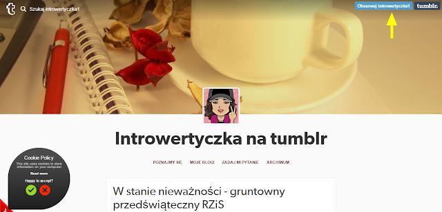 Tumblr - mikroblog