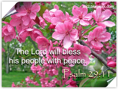 bless people with peace