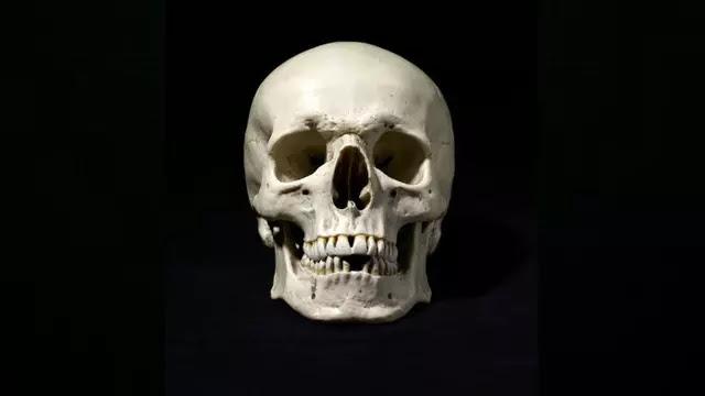 Tulang Manusia Marak Dijual di Instagram