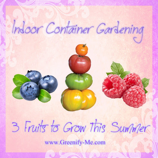 Indoor Container Gardening: 3 Fruits to Grow This Summer