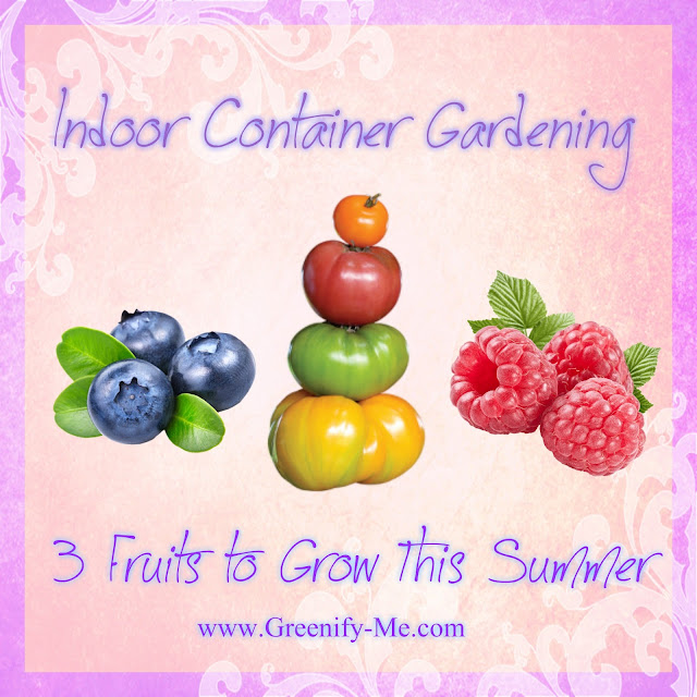indoor container gardening