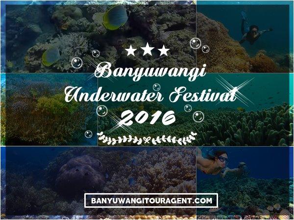 Banyuwangi Underwater Festival 2016