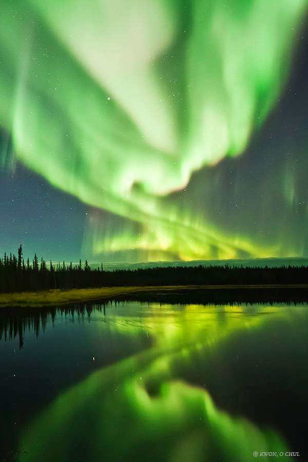Dazzling Displays of Aurora Borealis Dance Across the