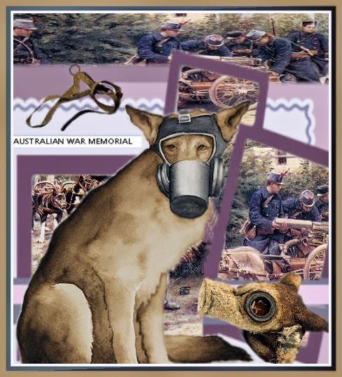 masque,erzat, gazs moutardes, phénol, chiens messager, berger allemand