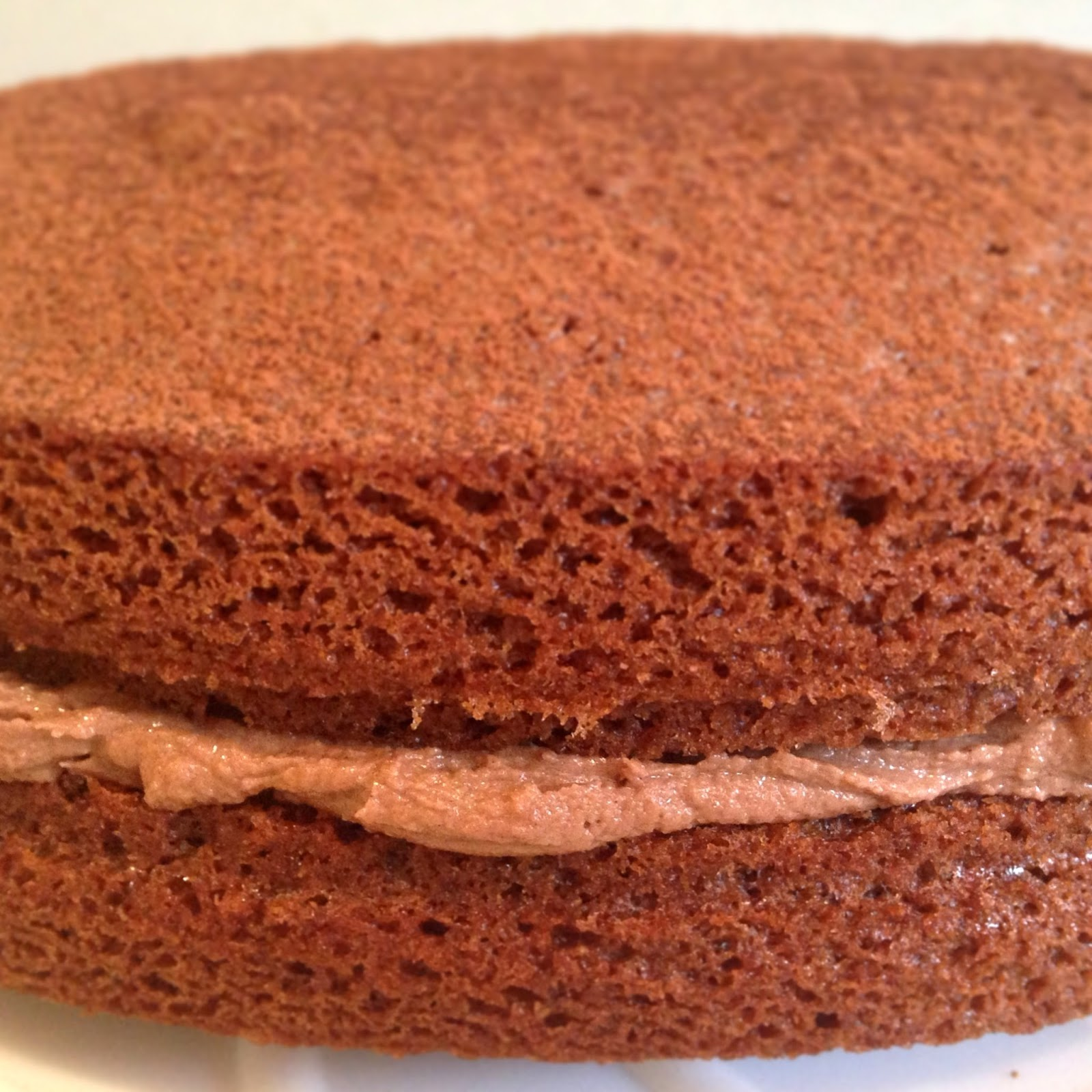 Chocolate victoria sponge bakingbar for Chocolate sponge ingredients
