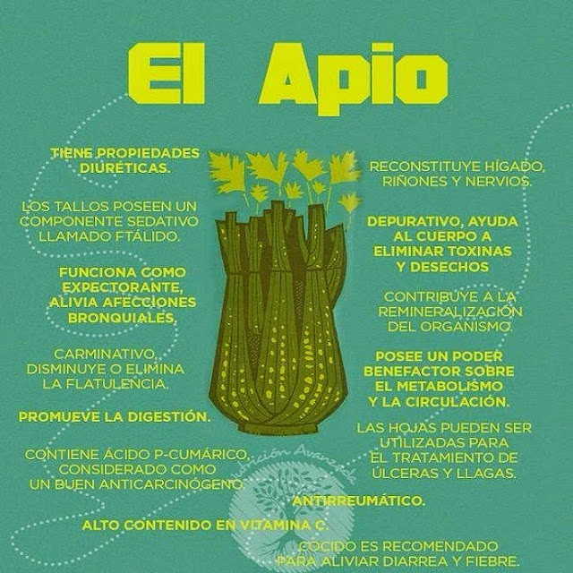 APIO - PROPIEDADES Y BENEFICIOS
