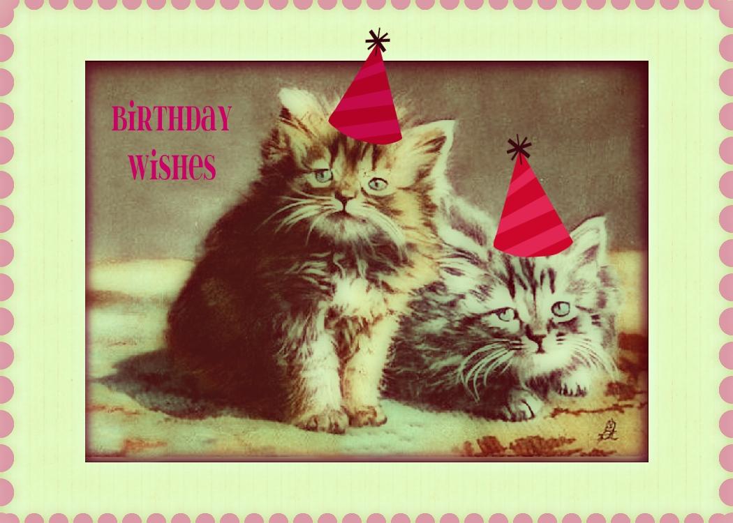 Kitty Cat Birthday Wishes