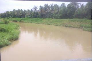Mancing Beles saat Sungai Sedang Banjir keruh tawes bader