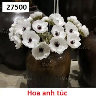 Phu kien hoa pha le o Duc Tu