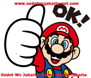 http://www.sedotwcjakarta-net.com/