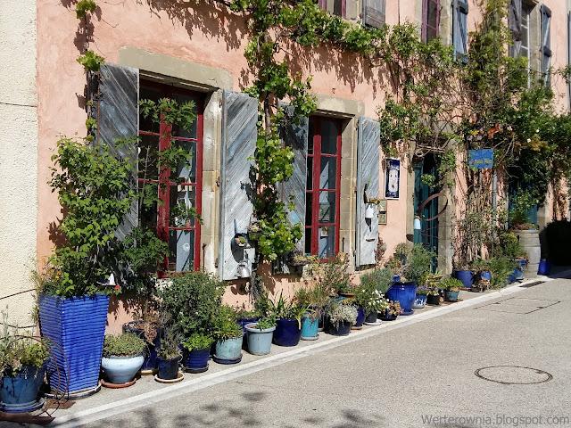 Roślinne bogactwo Francji