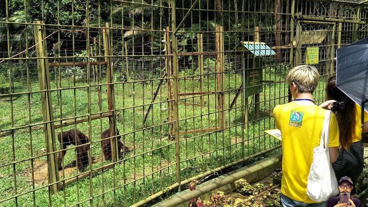 Bukit Merah Laketown Resort - Pulau Orang Utan #SIF2017