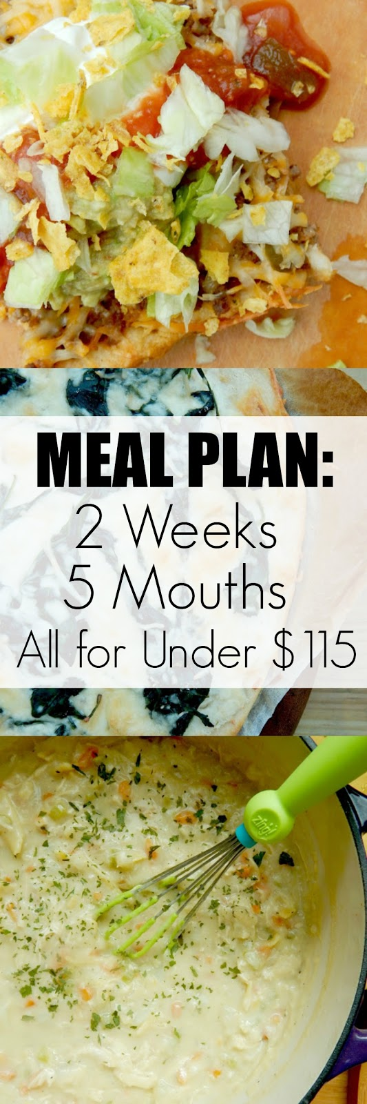 Meal Plan: 2 Weeks, 5 Mouths, All for Under $115...a superb plan for a hungry family!  Plenty of leftovers for lunches and extras that will stock your fridge and pantry. (sweetandsavoryfood.com)