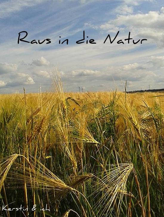 Weizenfeld im Sommer im Hunsrück