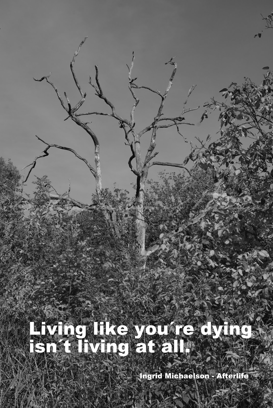 Living like you´re dying isn´t living at all.