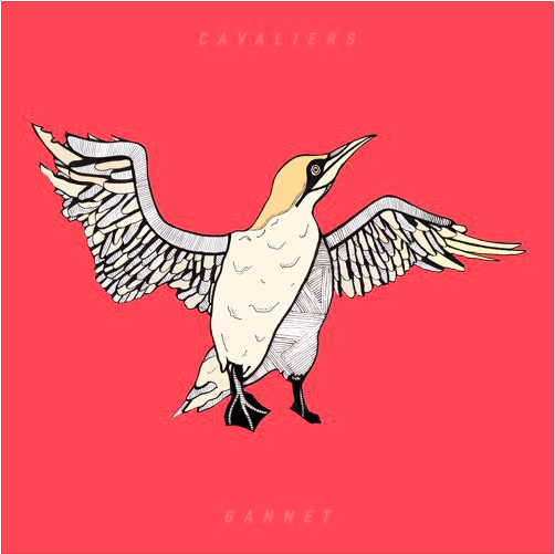 VYNE-L Cavaliers Single Gannet Review - Ellie Cawte