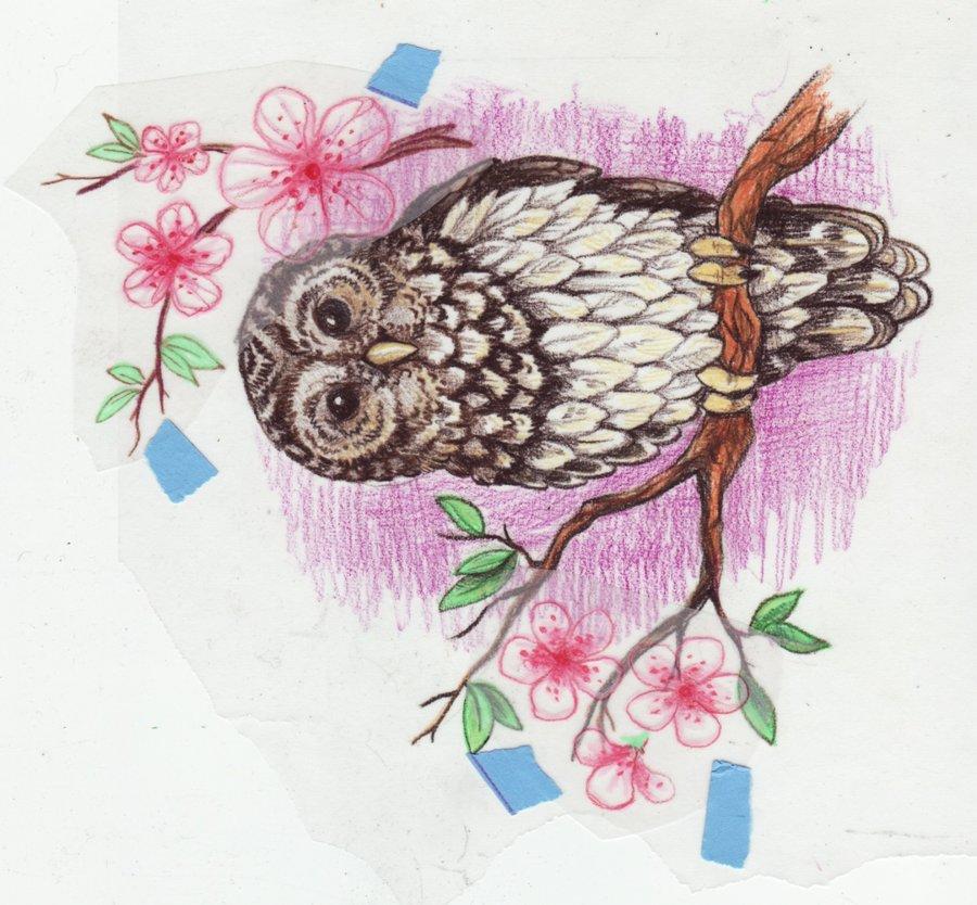 owl tattoo design idea images photos (28)