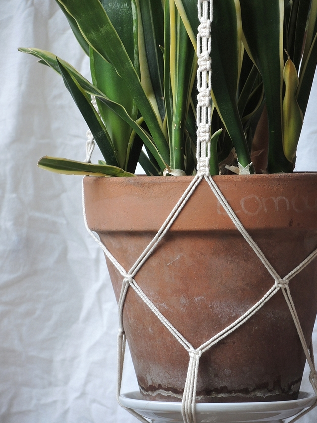 macramé plant hanger tutorial with fantasy square knot
