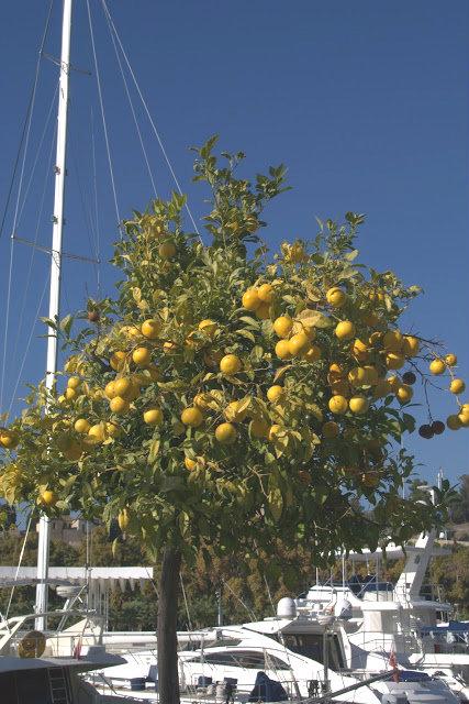 Costa del Sol co zobaczyć, co zwiedzić?
