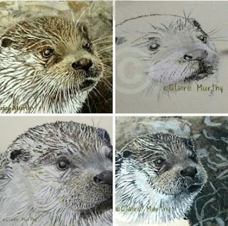 Otter drawing : wildlife art class