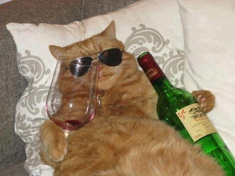 Deux verres et ça repart, trois verres et CA R...E...PAAART ! Cinq verres ... mais qui êtes-vous ?