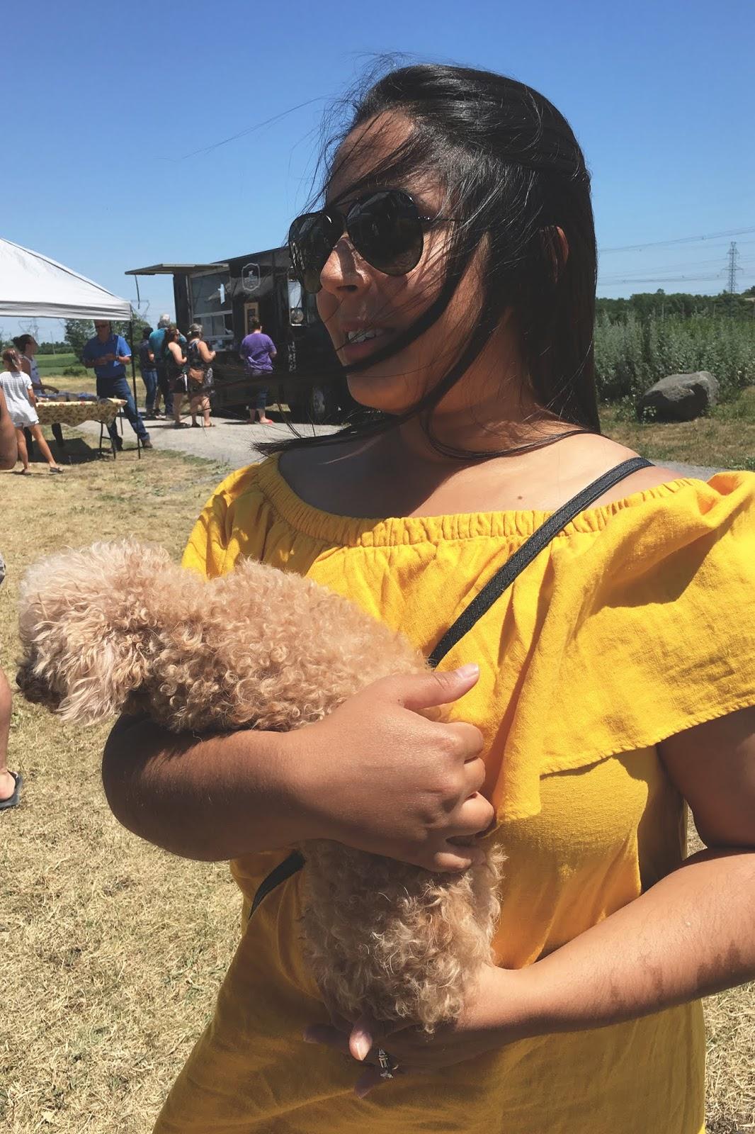 Rosalyn Gambhir - Life Update & Tips on Blogging