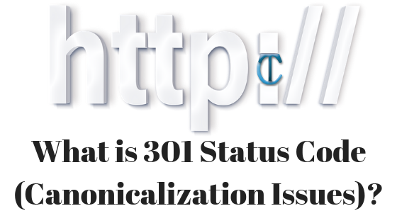What is 301 Status Code (Canonicalization Issues)? - ASP NET