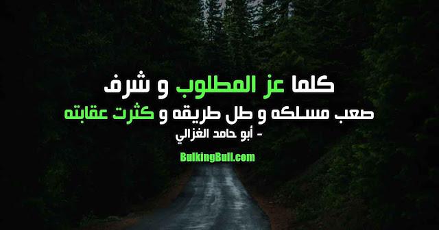 """2- """"كلما عز المطلوب و شرف ، صعب مسلكه و طل طريقه و كثرت عقابته"""" - أبو حامد الغزالي"""